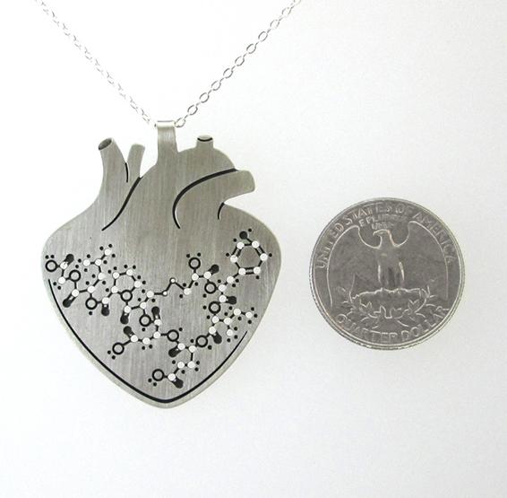 oxytocin anatomy silver coin
