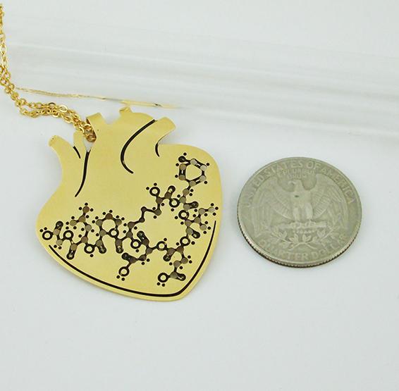 Oxytocin molecule in anatomy heart gold coin