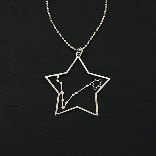 Pisces necklace in silver by Delftia Science Jewelry