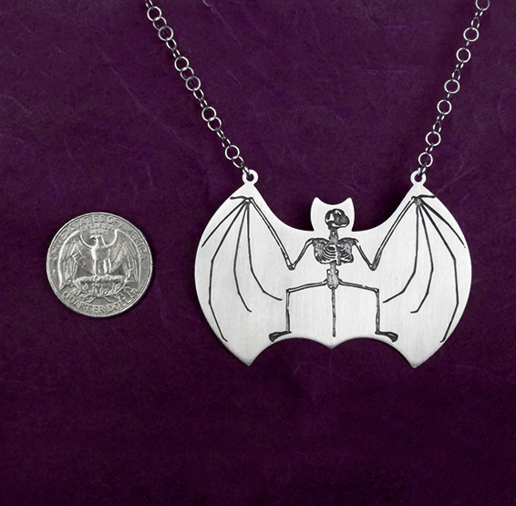 bat anatomy coin